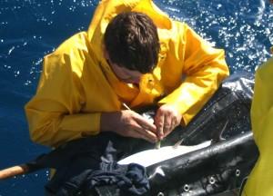 John Chliders - SWFSC-NOAA
