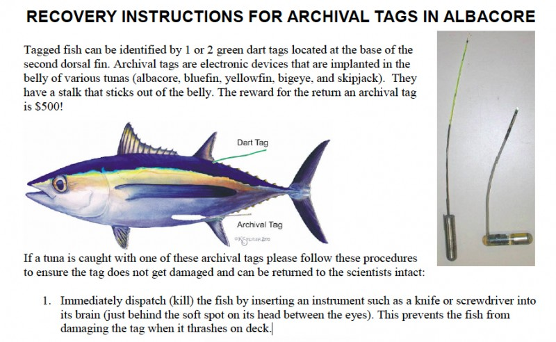 tag instructions