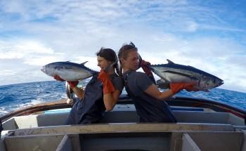 Albacore Fishermen